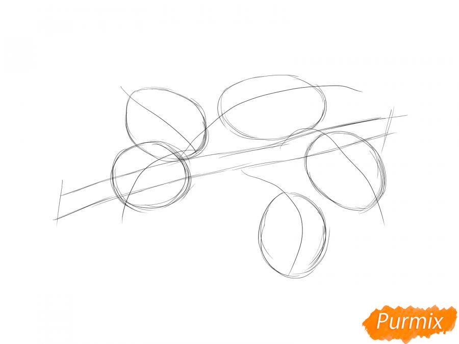 Рисуем ветку с листьями груши - шаг 3