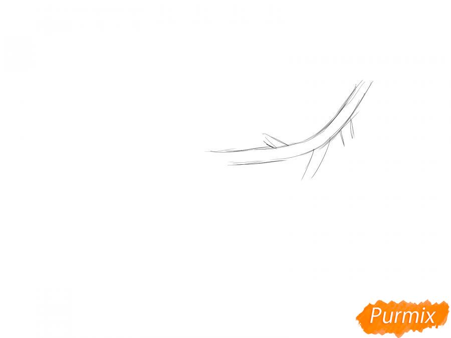 Рисуем ветку с листьями сливы - шаг 1