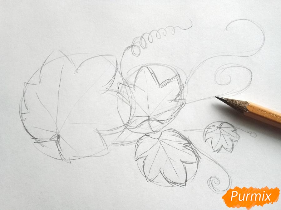 Рисуем ветку с листьями винограда - шаг 2