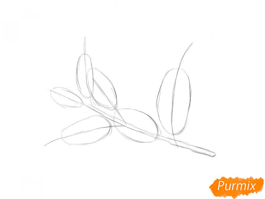 Рисуем ветку с листьями вишни - шаг 2