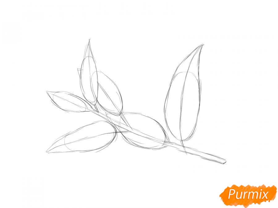 Рисуем ветку с листьями вишни - шаг 3