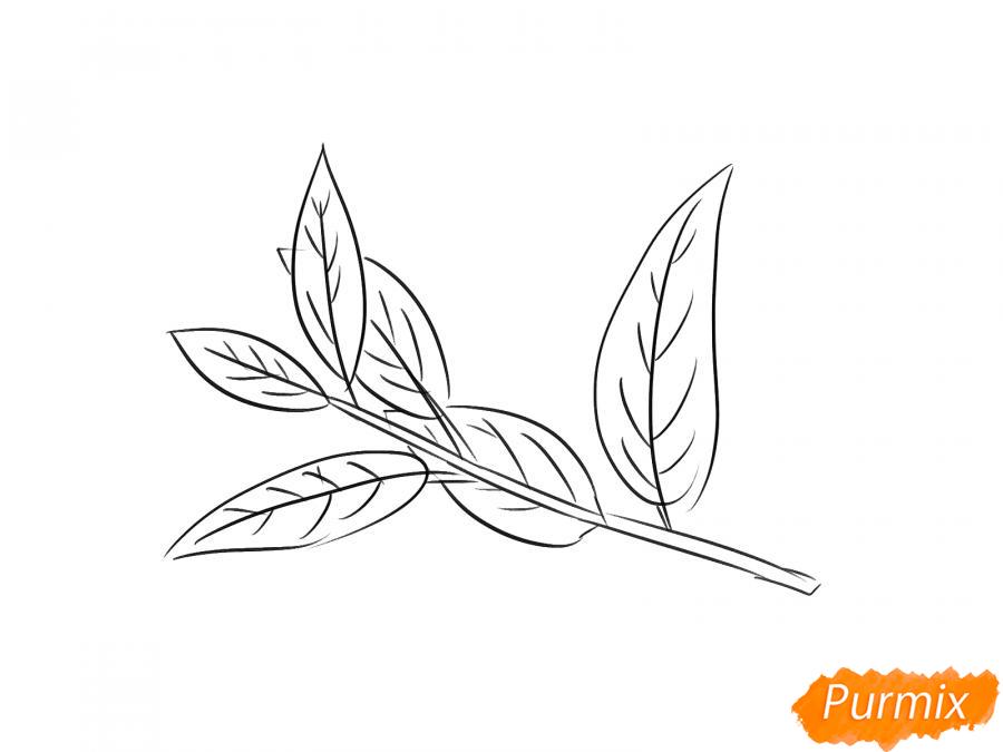 Рисуем ветку с листьями вишни - шаг 5