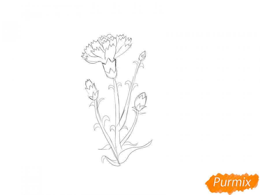 Рисуем веточку гвоздики - шаг 4
