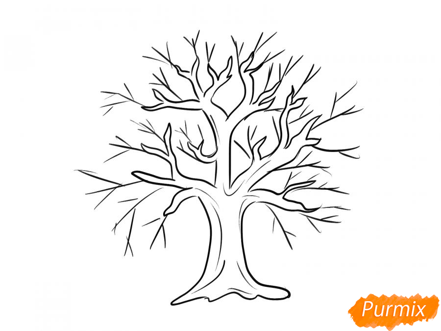 Рисуем вишневое дерево без листьев - шаг 5