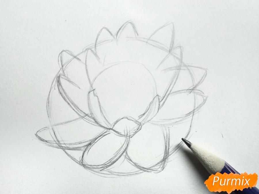 Рисуем водяную лилию карандашами - шаг 3