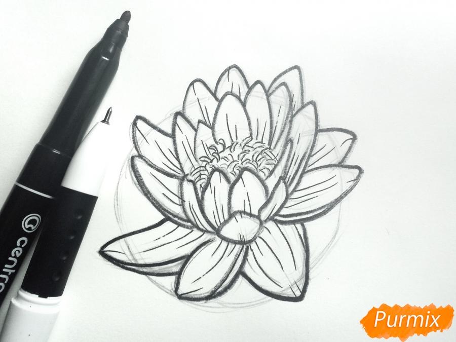 Рисуем водяную лилию карандашами - шаг 6