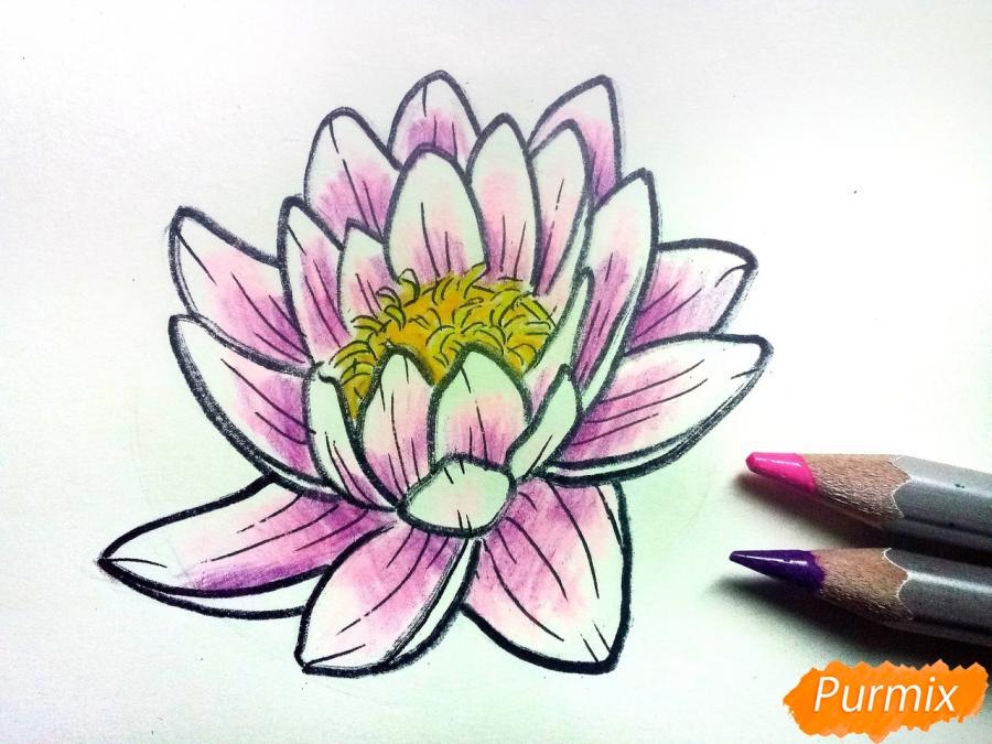 Рисуем водяную лилию карандашами - шаг 8