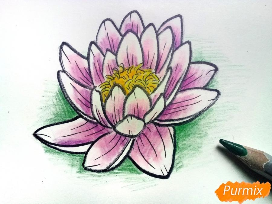 Рисуем водяную лилию карандашами - шаг 9