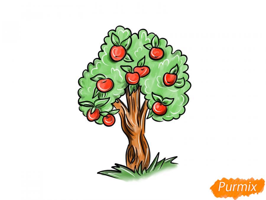 Рисуем яблочное дерево - шаг 10