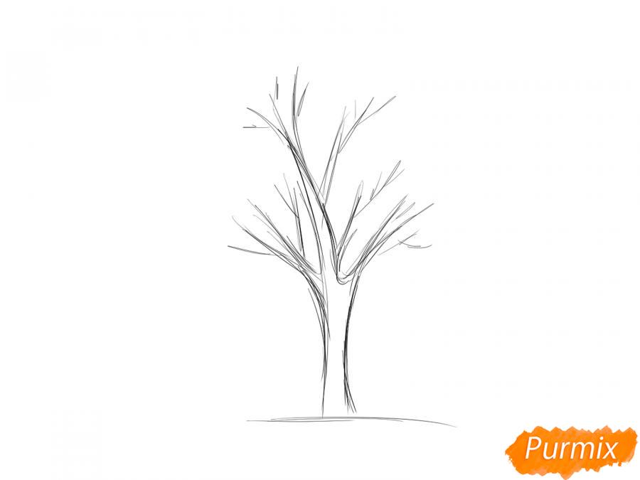 Рисуем ясень без листьев - шаг 2