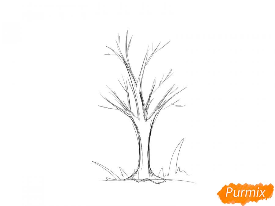 Рисуем ясень без листьев - шаг 3