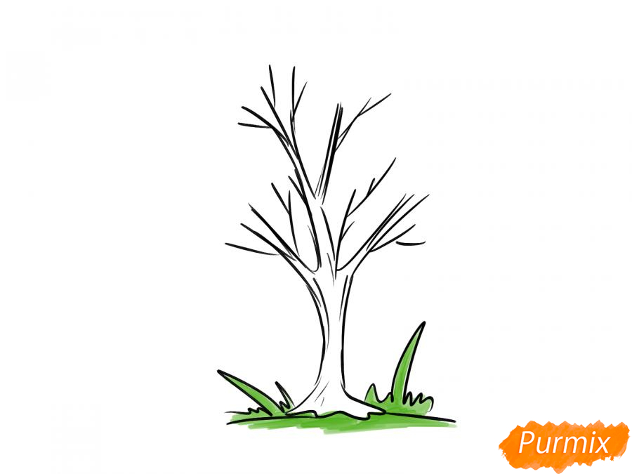 Рисуем ясень без листьев - шаг 5