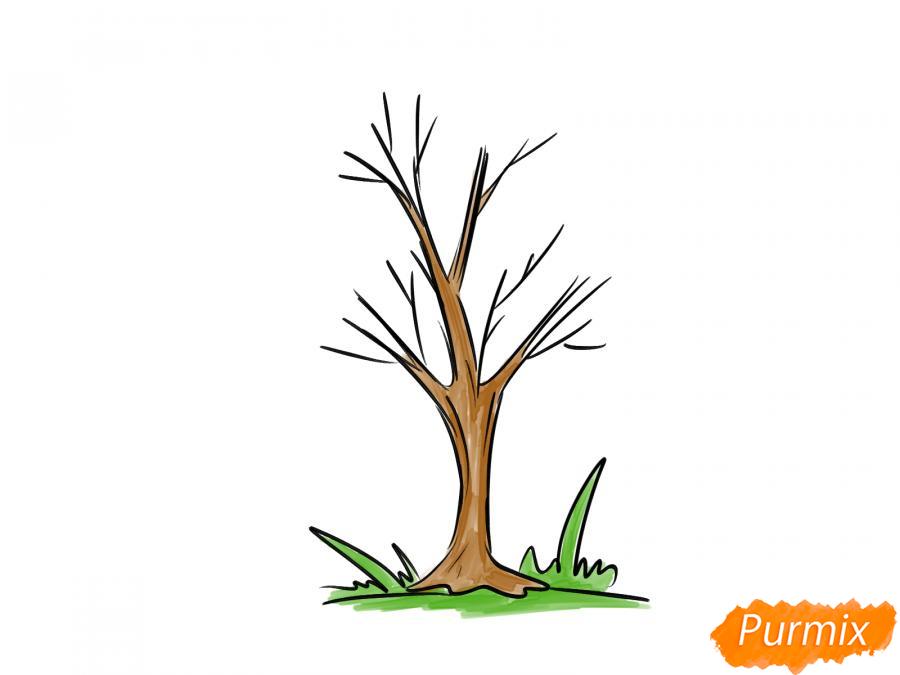 Рисуем ясень без листьев - шаг 6