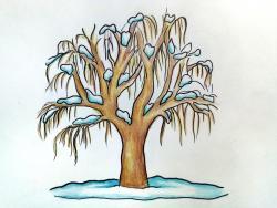 Фото зимнее дерево карандашом