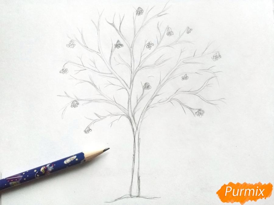 Рисуем зимнее дерево рябины - шаг 3