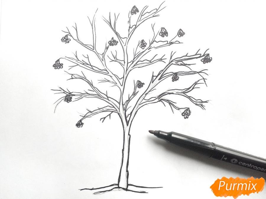 Рисуем зимнее дерево рябины - шаг 4