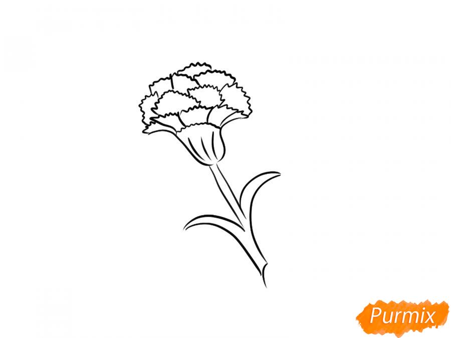 Как просто нарисовать одну гвоздику ребенку - шаг 5