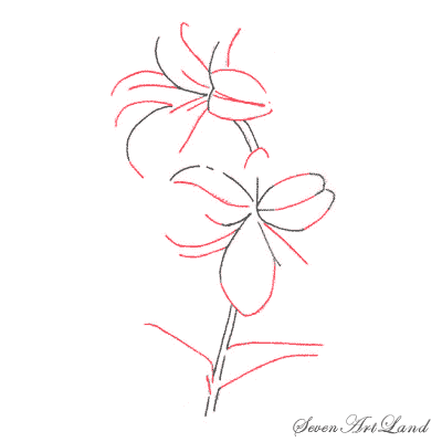 Рисуем белые Лилии - шаг 2