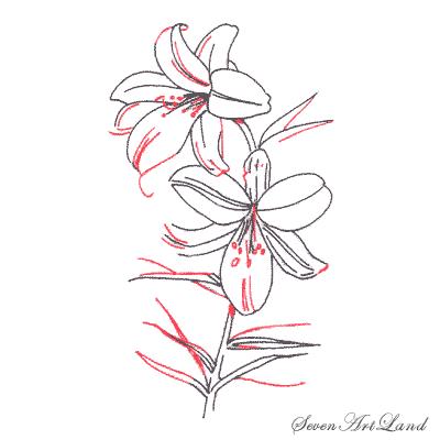 Рисуем белые Лилии - шаг 4