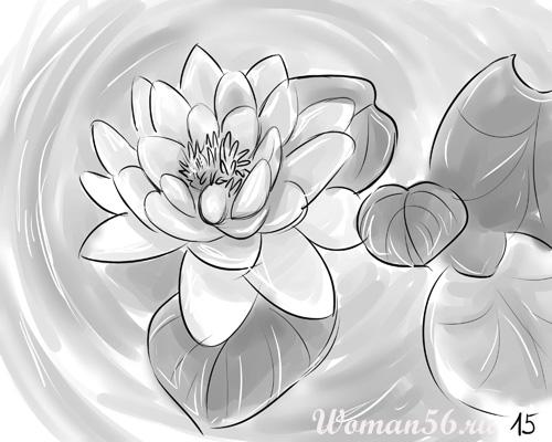 Рисуем цветок лотос - шаг 15