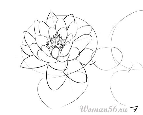 Рисуем цветок лотос - шаг 7