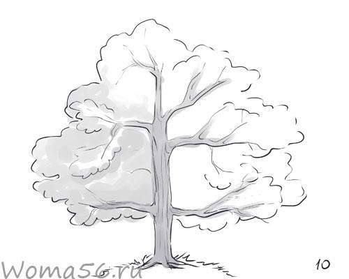 Рисуем лиственное дерево - шаг 10
