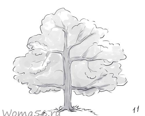 Рисуем лиственное дерево - шаг 11