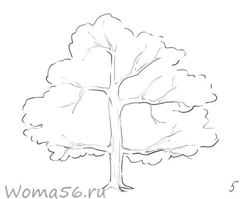 Рисуем лиственное дерево - шаг 5