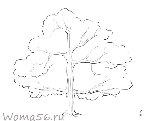 Рисуем лиственное дерево - шаг 6