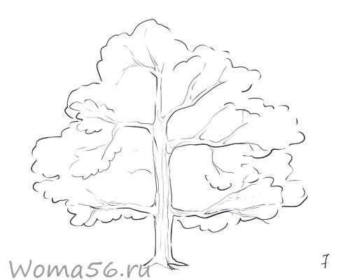 Рисуем лиственное дерево - шаг 7
