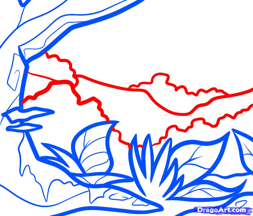 Рисуем Джунгли