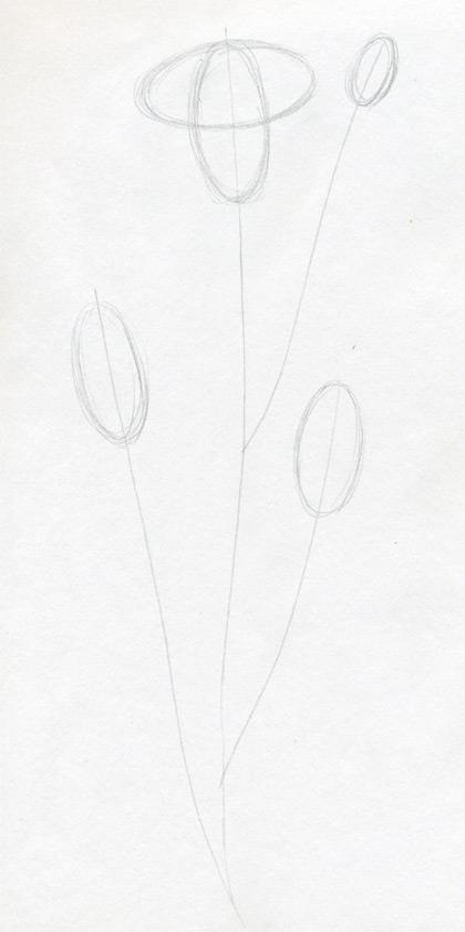 Рисуем гвоздику - шаг 2