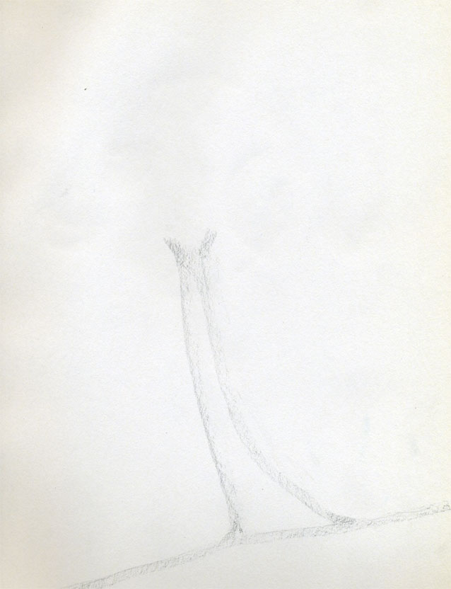 Рисуем кокосовую пальму - шаг 1