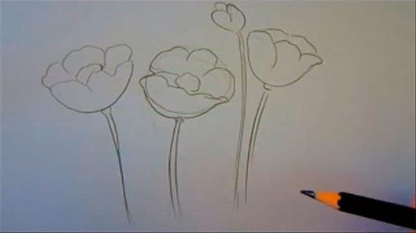 Рисуем маки - шаг 3