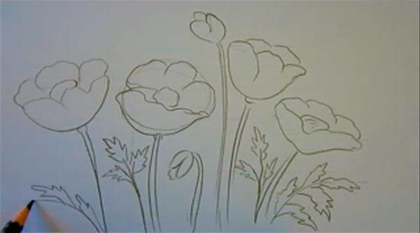 Рисуем маки - шаг 5