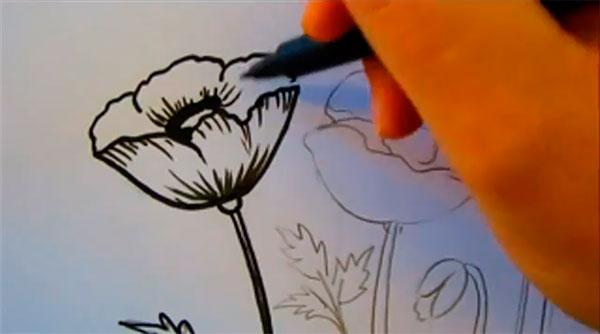 Рисуем маки - шаг 6