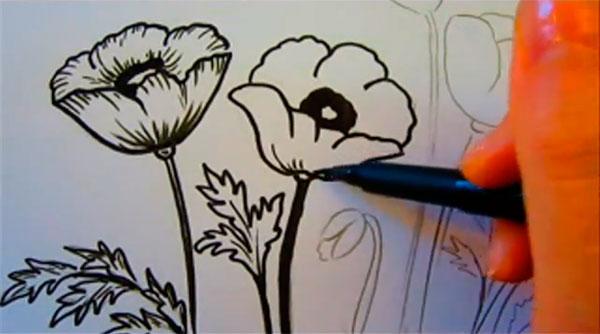Рисуем маки - шаг 7