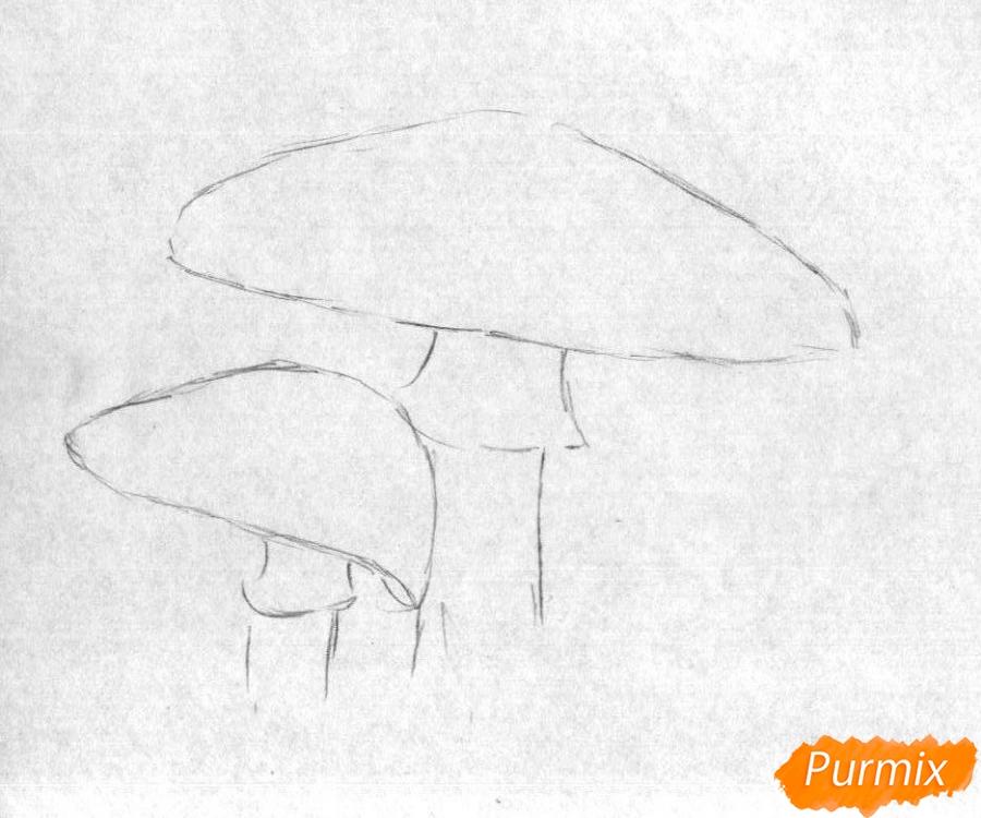 Рисуем мухомор карандашами и чёрной ручкой - шаг 1