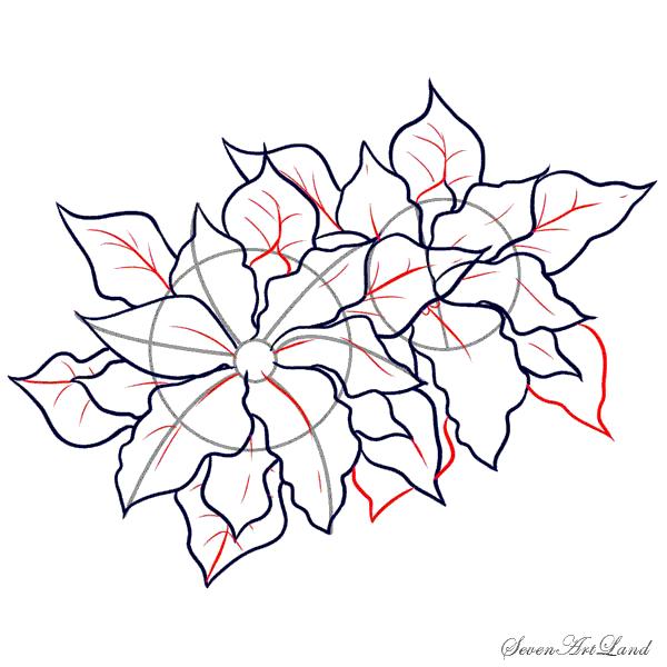 Рисуем Пуансетию