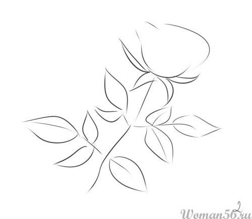 Рисуем розу   для начинающих - шаг 1