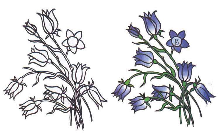 Как  нарисовать цветы колокольчики  для начинающих - шаг 2