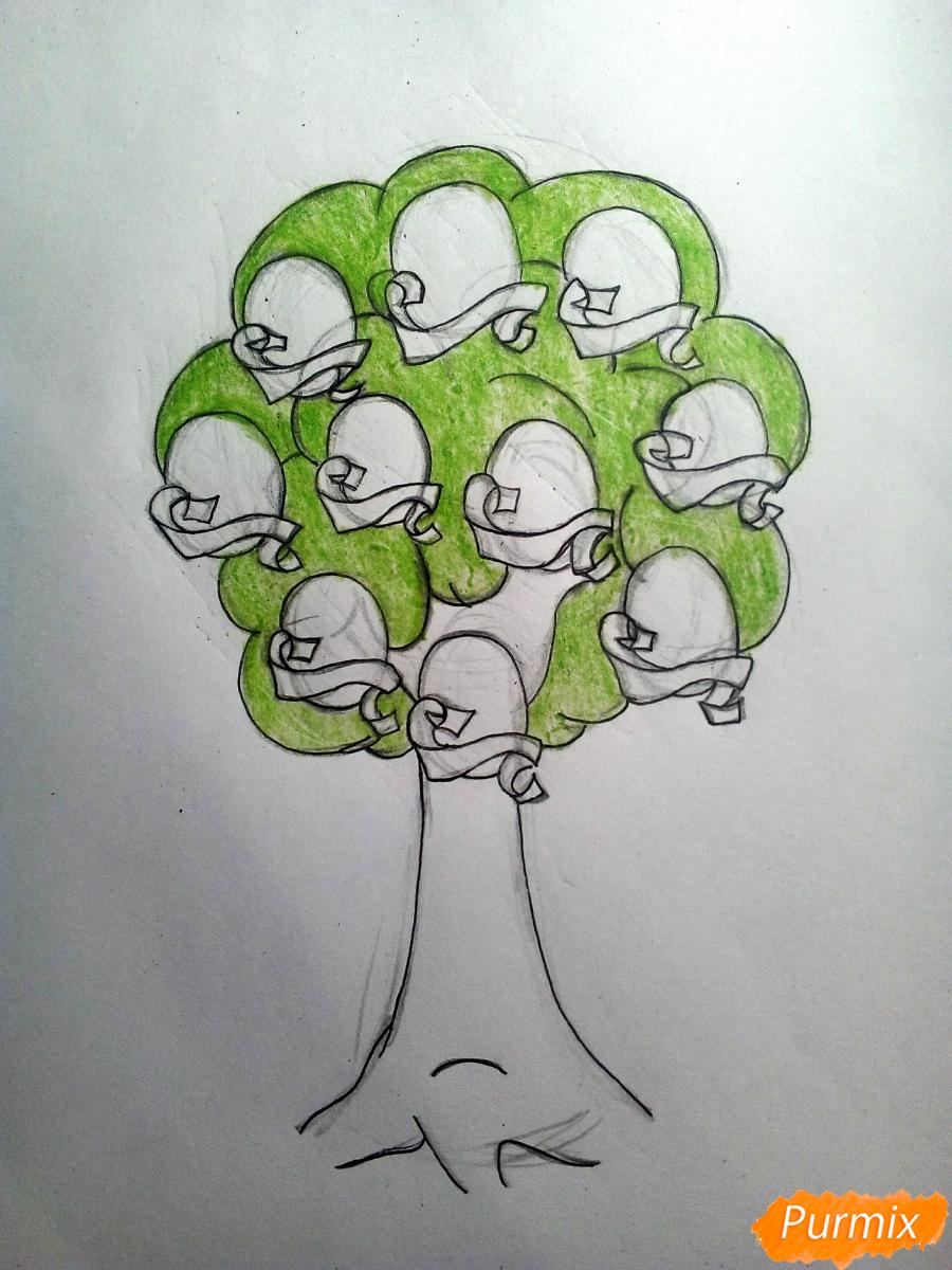 Рисуем генеалогическое древо семьи - шаг 5