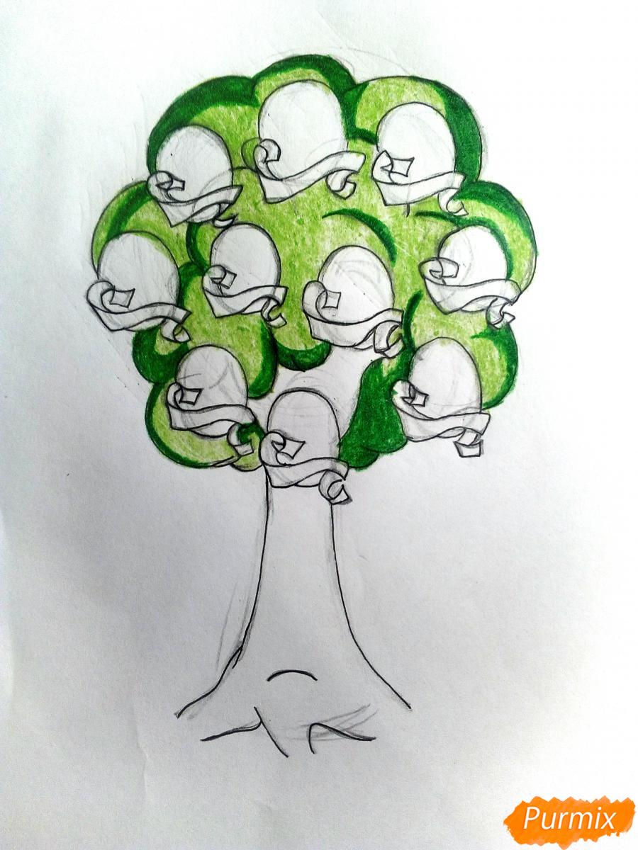 Рисуем генеалогическое древо семьи - шаг 6