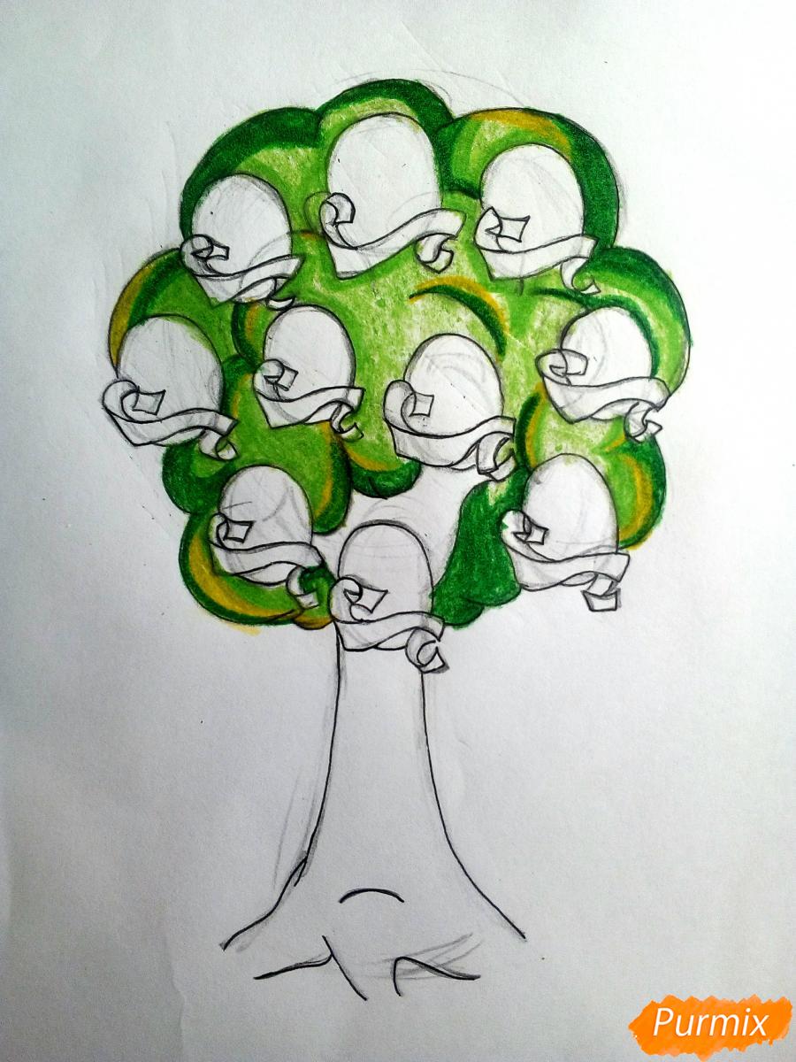 Рисуем генеалогическое древо семьи - шаг 7