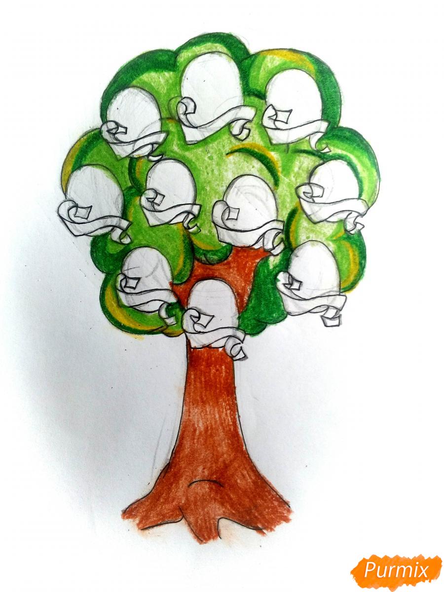 Рисуем генеалогическое древо семьи - шаг 8