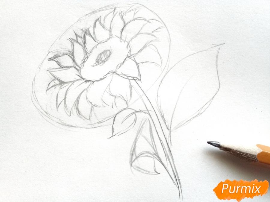 Рисуем подсолнух цветными карандашами - шаг 4