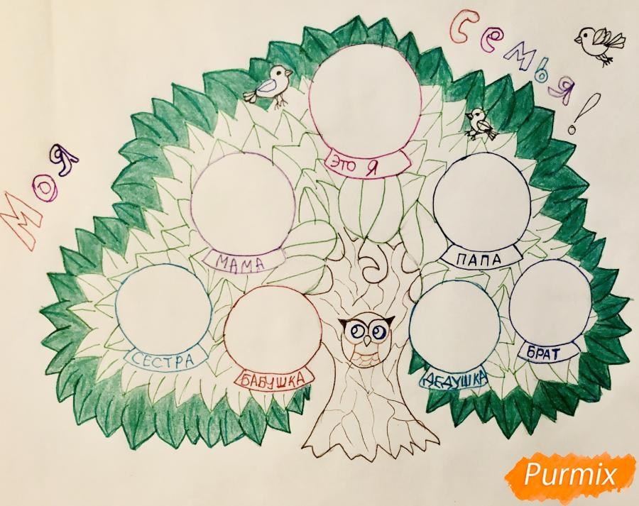 Рисуем семейное генеалогическое древо с птичками для детей - шаг 7