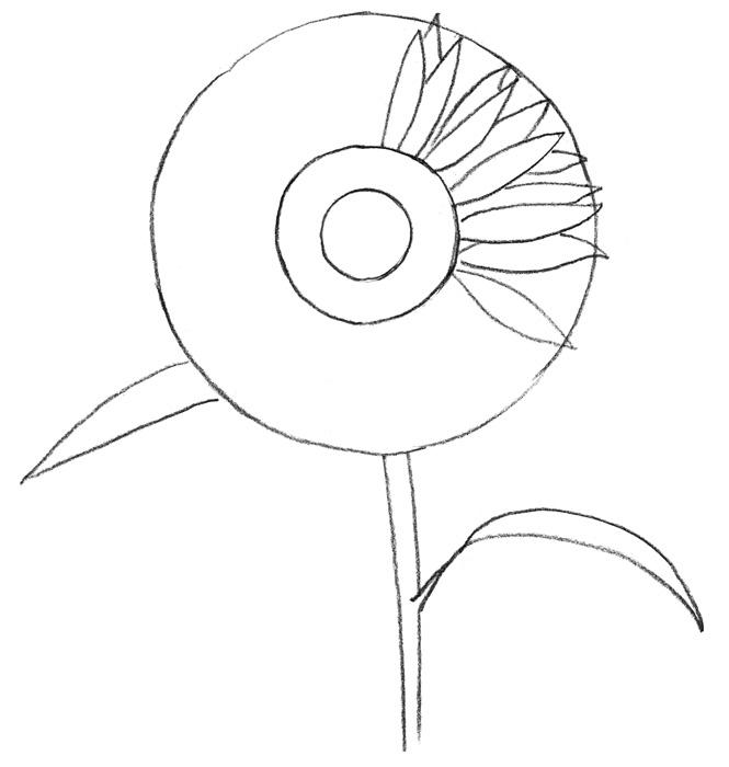 Учимся рисовать Подсолнух для детей - шаг 1