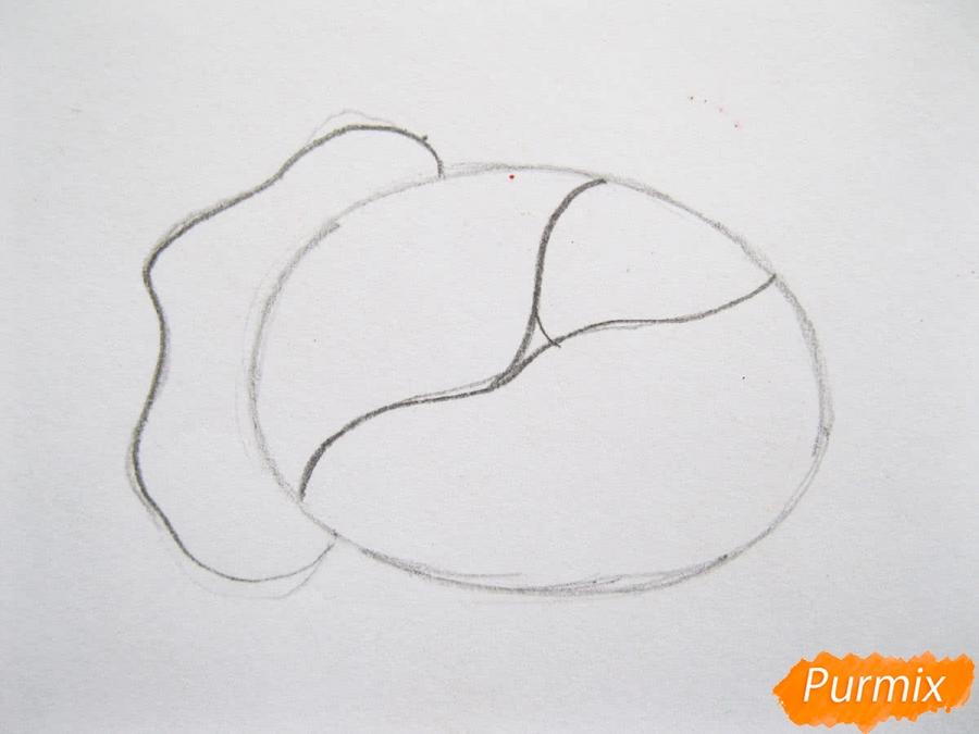 Как легко нарисовать кочан капусты цветными карандашами - шаг 3