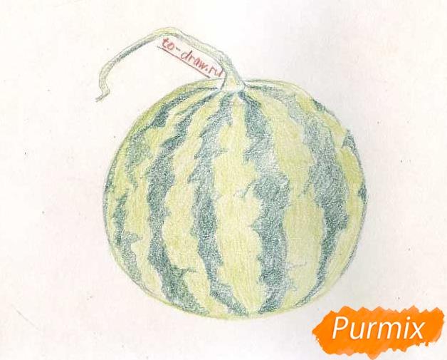 Рисуем целый арбуз цветными карандашами - шаг 5